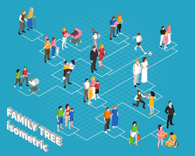 Ilustración isométrica del árbol genealógico