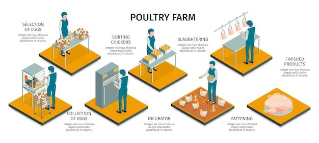 Ilustración isométrica de la granja avícola