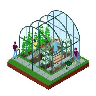 Ilustración isométrica de invernadero