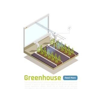 Ilustración isométrica de jardinería de invernadero hidropónico moderno