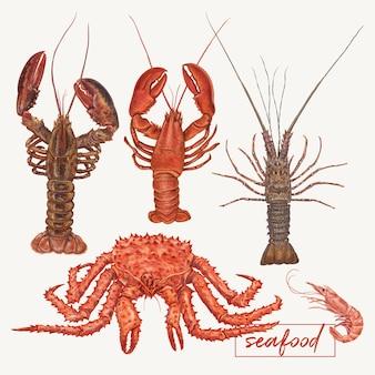 Ilustración de langostas y cangrejos