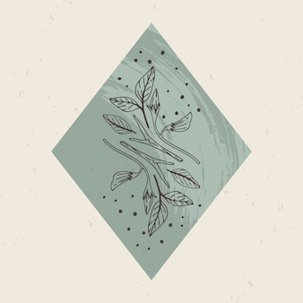 Ilustración de logotipos místicos y esotéricos en un estilo lineal minimalista de moda. emblemas en estilo boho - plantas forestales