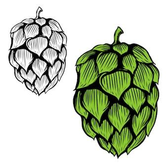Ilustración de lúpulo de cerveza sobre fondo blanco. elemento para logotipo, etiqueta, emblema, signo. ilustración