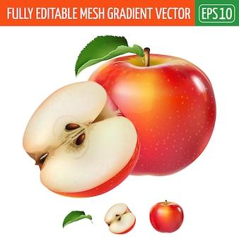 Ilustración de manzana roja sobre blanco