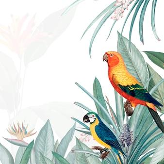Ilustración de maqueta tropical de guacamayo