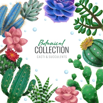Ilustración de marco de cactus
