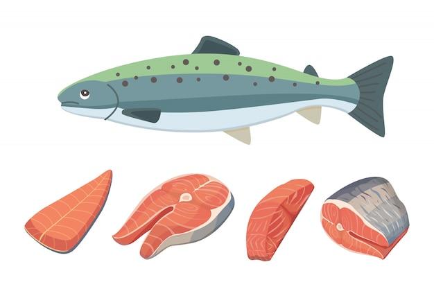 Ilustración de mariscos de pescado salmón.