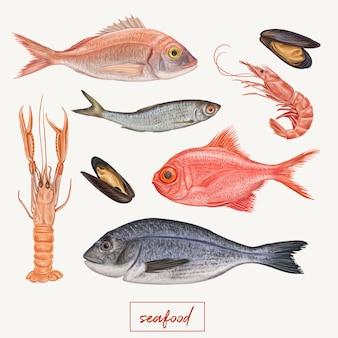 Ilustración de mariscos