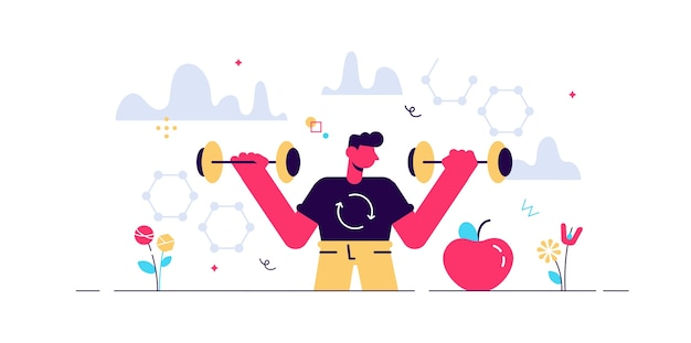 Ilustración del metabolismo masculino. proceso de alimentos a energía.