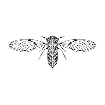 La ilustración de las moscas pequeñas con el cuerpo de zentangle para la inspiración del dibujo.