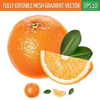 Ilustración naranja sobre blanco