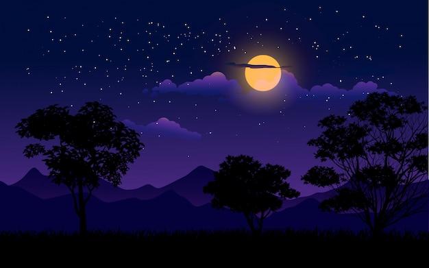 Ilustración nocturna con cielo estrellado nublado