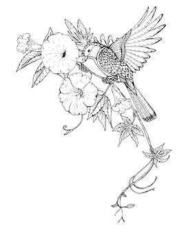 Ilustración de pájaro gráfico dibujado a mano en rama de flor de enredadera
