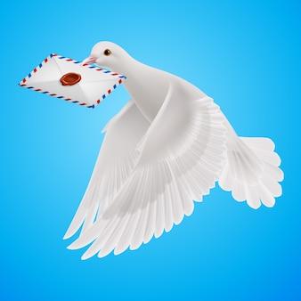 Ilustración de paloma blanca