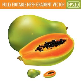 Ilustración de papaya en blanco