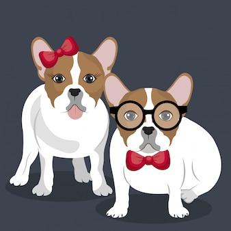 Ilustración de pareja bulldog