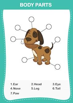 Ilustración de la parte del cuerpo del vocabulario del perro, escriba los números correctos de las partes del cuerpo