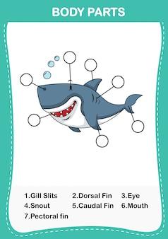 Ilustración de la parte del cuerpo del vocabulario de tiburones. escribe los números correctos de las partes del cuerpo.