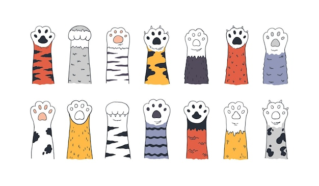 Ilustración de patas de gato
