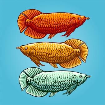 Ilustración de peces arowana