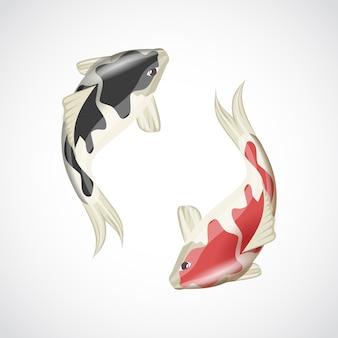 Ilustración de peces koi