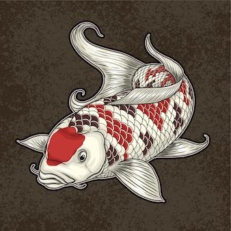 Ilustración de peces ornamentales koi japón