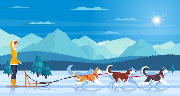 Ilustración de perros esquimales sleddog