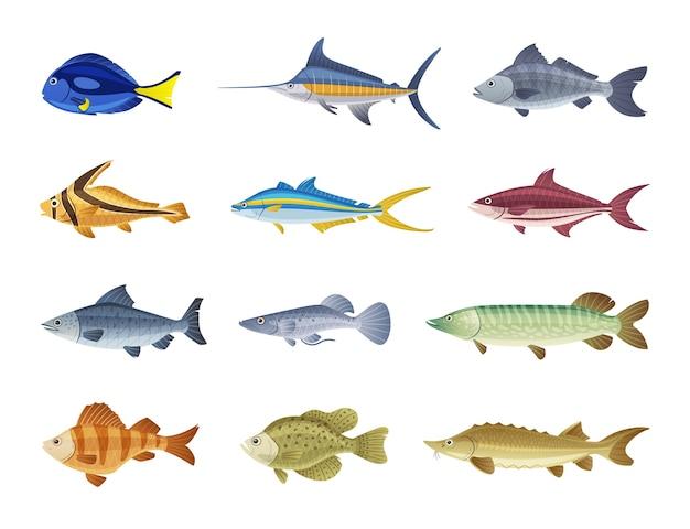 Ilustración de personajes de peces