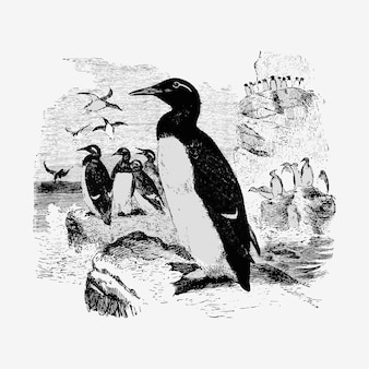 Ilustración de pingüinos vintage
