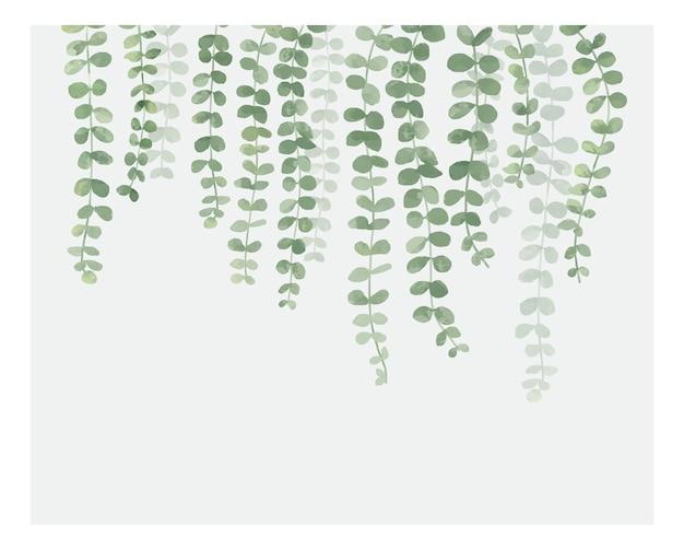 Ilustración de planta colgante aislada sobre fondo blanco