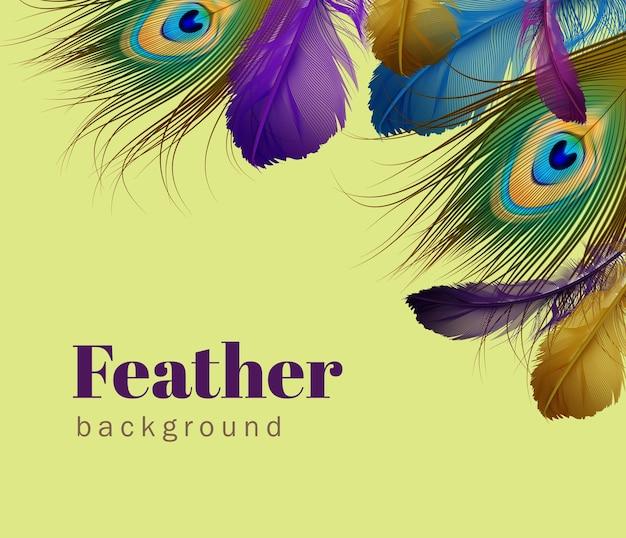 Ilustración de la plantilla de plumas exóticas con espacio para texto sobre fondo verde claro