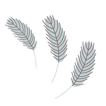 Ilustración de plumas de aves