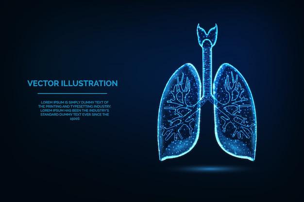 Ilustración poligonal de los pulmones del órgano del cuerpo humano