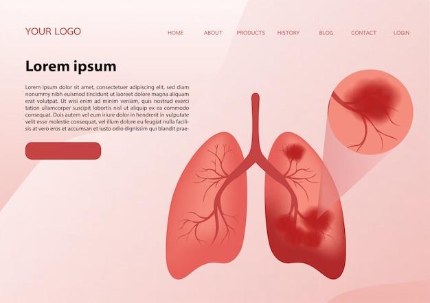 Ilustración de pulmones de una manera muy profesional
