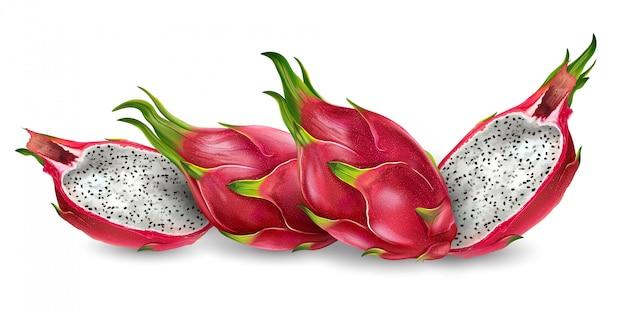 Ilustración realista de la fruta del dragón