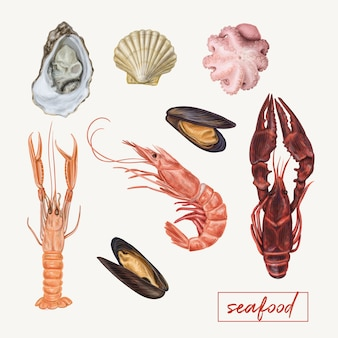 Ilustración realista de mariscos