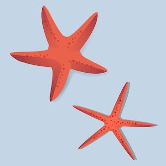Ilustración roja del vector de dos estrellas de mar