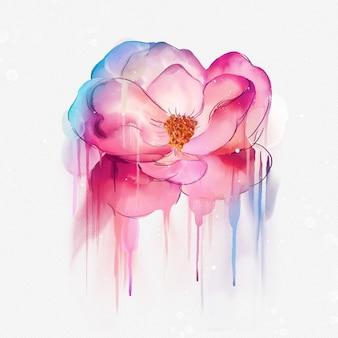 Ilustración rosa acuarela