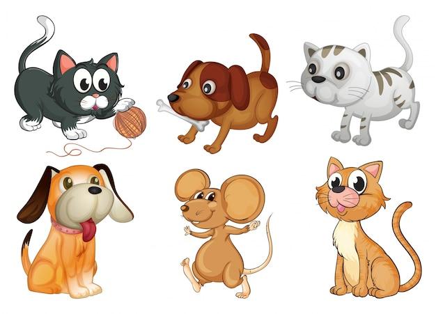 Ilustración de seis diferentes animales con cuatro patas sobre un fondo blanco