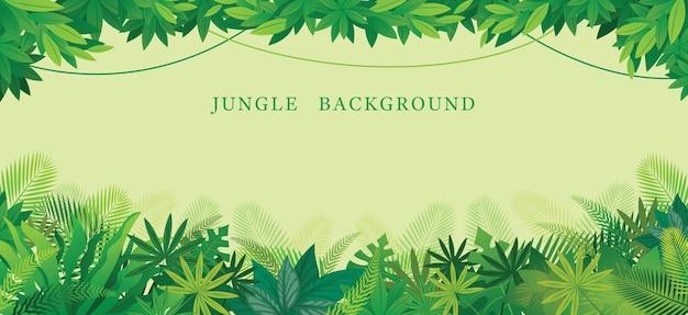 Ilustración de la selva tropical