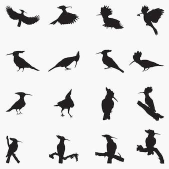 Ilustración de siluetas de aves abubilla