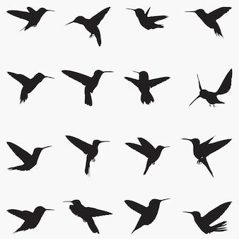 Ilustración de siluetas de colibríes