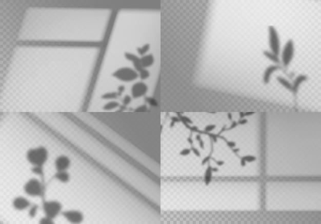 Ilustración de sombras de ventana superpuesta
