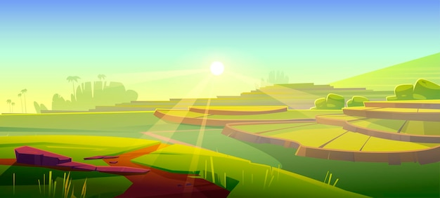 Ilustración de terrazas de campo de arroz