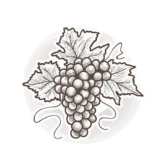 Ilustración de uva de estilo vintage