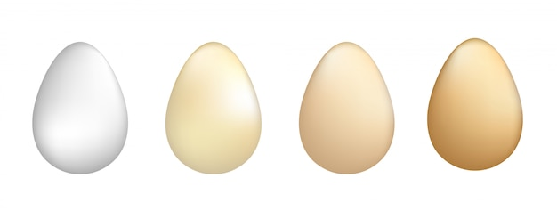 Ilustración de vector de conjunto de huevos.