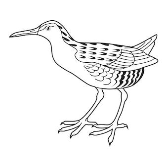 Ilustración de vector dibujado a mano de lavandera aislado sobre fondo blanco estilo de dibujo de arte lineal