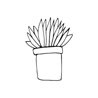 Ilustración de vector de doodle de planta dibujada a mano en lindo estilo escandinavo