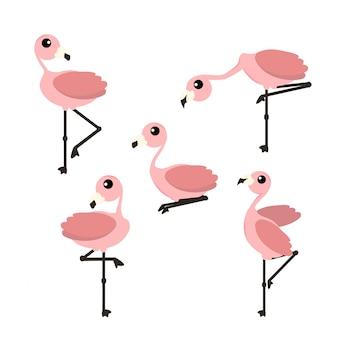 Ilustración de vector flamenco rosado aislado sobre fondo blanco