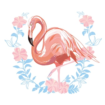 Ilustración de vector de flamenco rosado aislado